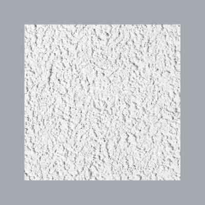 Cheyenne 2 Ft. x 2 Ft. White Cast Mineral Fiber Ceiling Tile (8-Count)